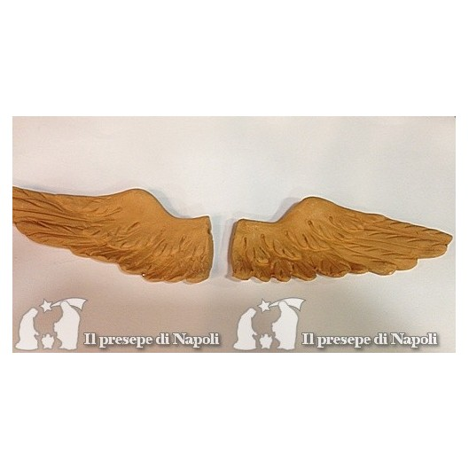 ali per angelo (grezze)