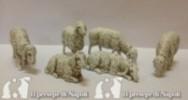 kit pecore 6 pezzi