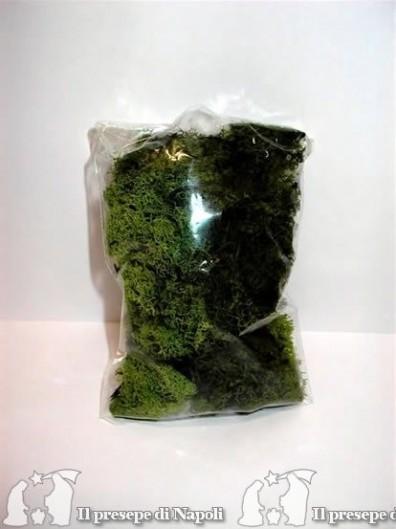 Busta lichene