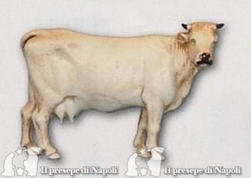 Mucca bianca