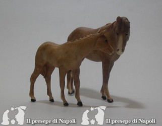 Coppia di cavalli