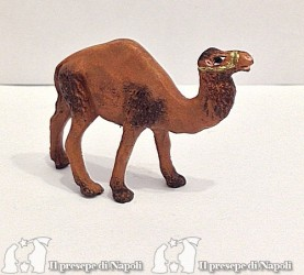 cammello alzato per pastori cm 4