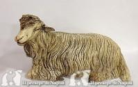 pecora seduta con occhi di vetro per pastori cm 35-40