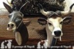 coppia bue e asino x pastori cm 30