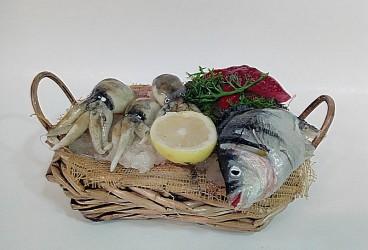 cesta con pesci