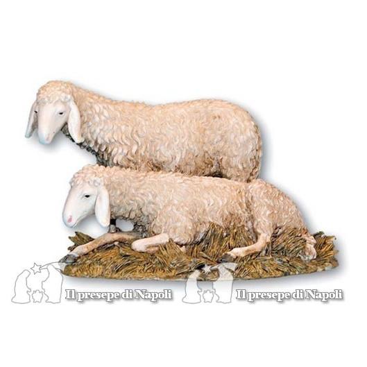 Gruppo pecore