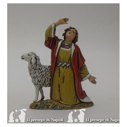 Meravigliato con pecora